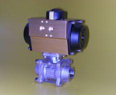 VDM3-40BDN100-316-AP5SR