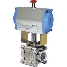 VM3-100BDN025-TITÁN-316/PTFE-AP3,5SR